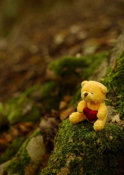 Tiny teddy sits under a tree
